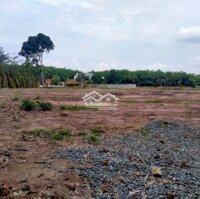 Đất hính chủ thị trấn mặt tiền đường bán gấp 350tr LH: 0379465686