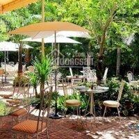 Cho thuê quán cà phê sân vườn, đường Hoàng Hoa Thám, P7, BT DT 30x15m, 1 lầu, giá 35 triệuth LH: 0937707508