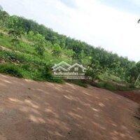 Cần bán 3 mẫu đất xã trừ văn thố LH: 0853349943