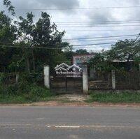 Bán đấu giá 1488m2 tại xã Long Nguyên, Bàu Bàng LH: 0865491869