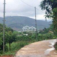 Bán nhà đất chính chủshr, wiu cao thoáng đẹp LH: 0934374491