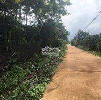 Cần bán gấp miếng đất trung tâm xã Đông Thanh LH: 0968419579