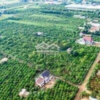 Đất nền 520m² ngay gần Đà Lạt LH: 0934221799