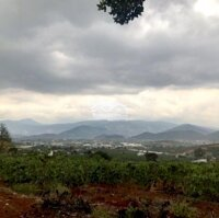 Đất thị trấn Nam Ban 525m2, gần chợ trường học LH: 0985172358