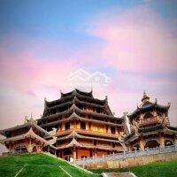 Đất nền phù hợp làm tịnh thất ngay chùa Phú An chỉ từ 3 triệum2 Chùa Phương Liên Tịnh Xứ LH: 0792628886