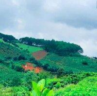 Tôi cần bán gấp 500m2 đất Mê Linh - Lâm Đồng cách Đà Lạt 6km chỉ 650 trnền, sổ riêng, Thổ cư 100m2 LH: 0909480099