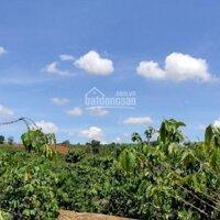 Cần bán nhanh 1254m2 Ngay TT Nam Ban, huyện Lâm Hà, cách đường nhựa 500m thích hợp đầu tư LH: 0971949949