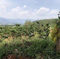 Cần bán mảnh đất 700m2, 450 triệu,Gia Lâm, gần Đà Lạt LH: 0936452886