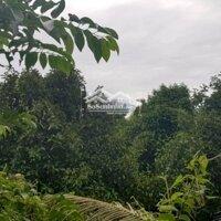 Cần bán thửa đất vườn đối diện Phường Thạnh Xuân, Q12 DT 3700m2, giá 13 tỷ LH: 0903115271
