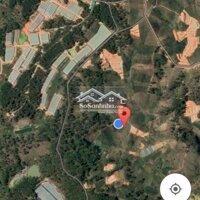 Bán vườn Đa Nhim, Lạc Dương 4600 m2 LH: 0988958649