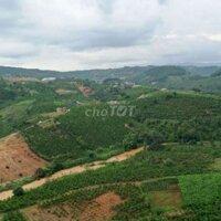 Nhà vườn Huyện Lâm Hà LH: 0983979025