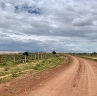 Đất giá rẻ 6000m2, sổ riêng gần khu Farm stay LH: 0938065294