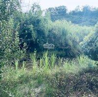 Đất đẹp 23000m2 gần Đà Lạt, giá rẻ LH: 0793760777
