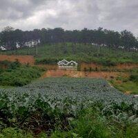 Đất nền giáp Đà Lạt xây biệt thự nghỉ dưỡng gần đồi thông LH: 0367337265