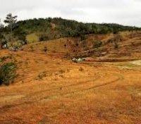 Bán đất view nghỉ dưỡng khu vực Lâm Đồng Diện tích lớn giá rẻ 100 TC, sổ sẳn LH: 0967733472 Hợp
