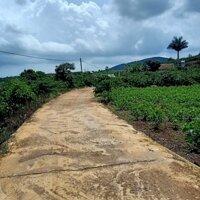 Gia đình cần bán 4470m đất Xã Đônh Thanh,với mặt tiền bê tông dài tận 97m giá 1tỷ9 LH: 0707192631