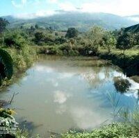 2ha3 đất làm du lịch , giáp suối, view cực đẹp thuộc Nam Ban Ngoại Ô Đà Lạtbằng 12 giá thị trường LH: 0971949949