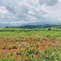 Đất đẹp sát khu du lịch nổi tiếng tại Đà Lạt LH: 0936738558