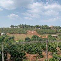 Bán lô đất 3147m2 tại Nam Hà có 200m2 thổ cư LH: 0362213737