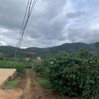 3828m2 đất trồng cà phê mặt tiền 58m thích hợp phân lô tại TT Nam Ban - Đông Thanh ngoại Ô Đà Lạt LH: 0971949949