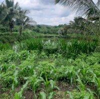 Đất giáp suối sẵn ao cá hàng dừa xanh giáp Đà Lạt LH: 0367337265