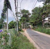 Cho Thuê Đất Thành phố Đà Lạt 2000m² LH: 0823232393