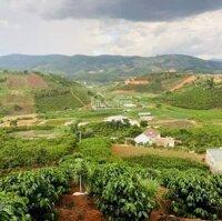 Bán đất Mê Linh view cfe Mê Linh 3 xào 2 tỷ tặng 100 thổ cư, có bán lẻ những lô nhỏ giá từ 400tr LH: 0906770148