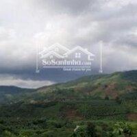 Lô đất 23000m2 Tầm Xá , Đông Thanh , Lâm Hà - Phù hợp phát triển du lịch , nghỉ dưỡng LH: 0939147777