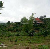 Đất vườn nghỉ dưỡng view đẹp, có suối trong lành thoáng mát tại Đông Thanh Lâm Hà Lâm Đồng LH: 0385057218