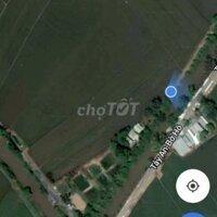 Đất ruộng Khu xầm ức tương lai LH: 0943440127