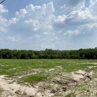 Đất xã Định an giáp suối rất thích hợp trồng xây nghĩ dưỡng LH: 0916242723