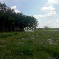 Ngân hàng thanh lí lô đất giá rẻ LH: 0827140708
