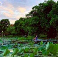 Cần bán gấp lô góc nhà phố thương mại Thủy Nguyên KĐT Ecopark, 200m2 kinh doanh tốt LH: 0988393063
