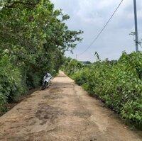 Bán 2,9 sào Ấp 4, Sông Nhạn, Cẩm Mỹ, Đồng Nai LH: 0707525676