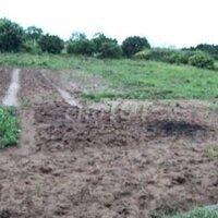 Cần bán đất ruộng gần đường mới xã vũ chính LH: 0962676472
