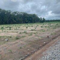 Chính chủ nhượng gấp lô đất rẻ gần khu công nghiệp Becamex giá 450tr LH: 0336007790