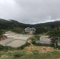 Đất đẹp khu Măng Lin Phường 7 Tp Đà Lạt LH: 0916976171