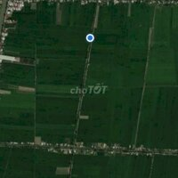 Bán đất ruộng 30000m2 LH: 0963160989