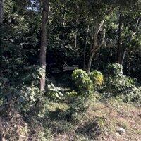 Cần Bán lô đất cực đẹp 3600m2 bám mặt đường quốc lộ 6 thuộc khu vực Kỳ Sơn, Hoà Bình LH: 0977265261