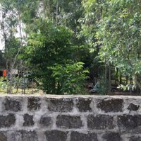 Chủ xuất ngoại cần bán đất đẹp giá rẻ LH: 0779410669