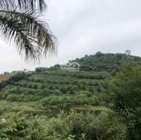 Bán 12ha đất full thổ cư - View hồ - Tại Lương Sơn - HB - Đầu tư phân lô biệt thự liền kề LH: 0983572889