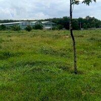 Công ty Tuấn Phong cho thuê nhà xưởng tại KCN Thạnh Phú, huyện Vĩnh Cửu, tỉnh Đồng Nai LH: 0945825408