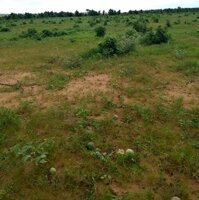 Kẹt tiền bán rẻ lô đất 8617m2430tr đã có sổ riêng gần Khu du lịch Bàu Trắng, Bình Thuận LH: 0909364150