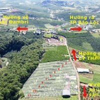 Cơ hội cuối cùng sở hữu nền đất chính chủ đẹp hết chỗ chê tại Đambri, MT đường lớn Lý Thái Tổ LH: 0938952195