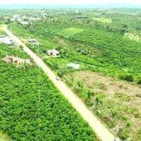 Đất ngay ngã ba Lộc An, sổ đỏ riêng - Đất mặt tiền - view thảo nguyên, giá chỉ 695 triệu250 m2 LH: 0979089937