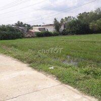 Bán đất Luật Bình- Phước Quang- Tuy Phước, BĐ LH: 0977707704