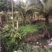 Đất ấp Bình Phong, xã Tân Mỹ Chánh LH: 0395151003