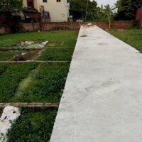 Bán nhanh lô góc 45m2 đường oto giá 29trm2 tại Đa Tốn, Gia Lâm, Hà Nội LH 0983253436