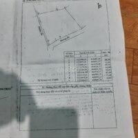 Bán 9sao3 9300m2 đất trồng cây ăn trái LH: 0908266958