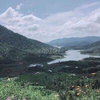 Đất mặt tiền ql50- Đa Tro- Đa Mi- Hàm Thuận LH: 0399939629